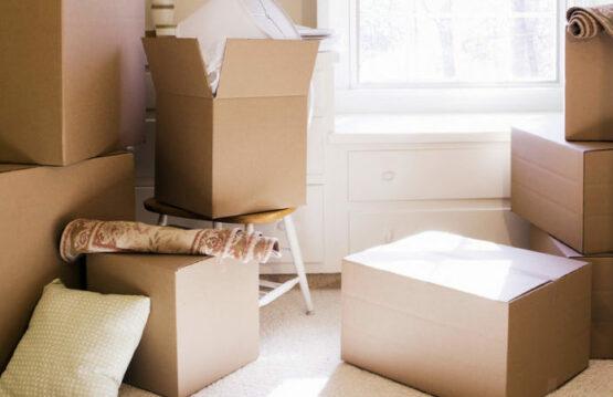 scatole americane standard in pronta consegna